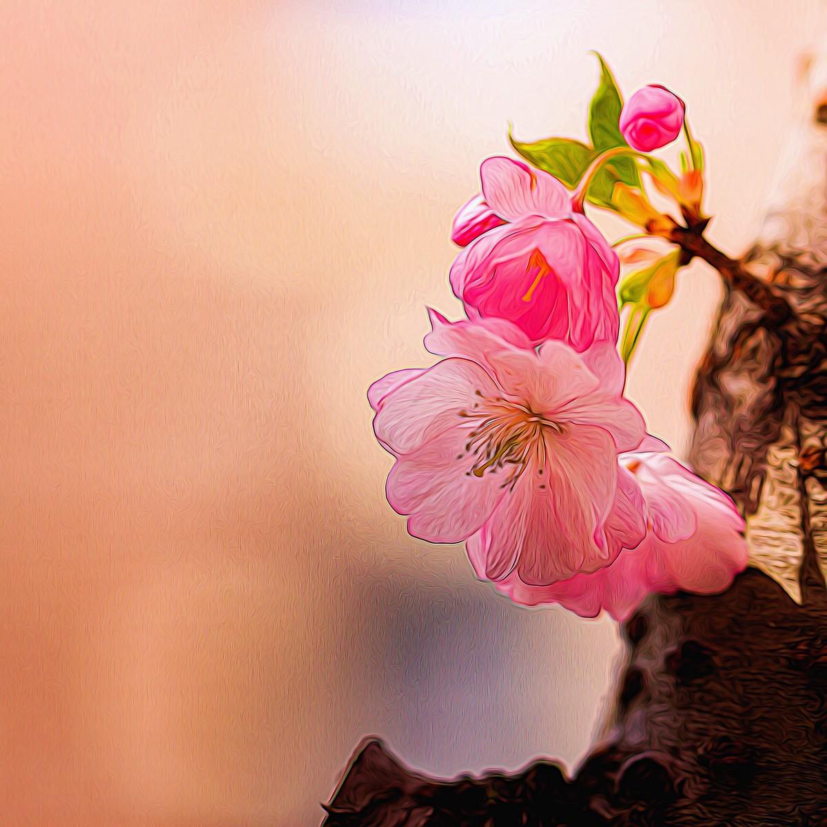 迎候春天_图1-4
