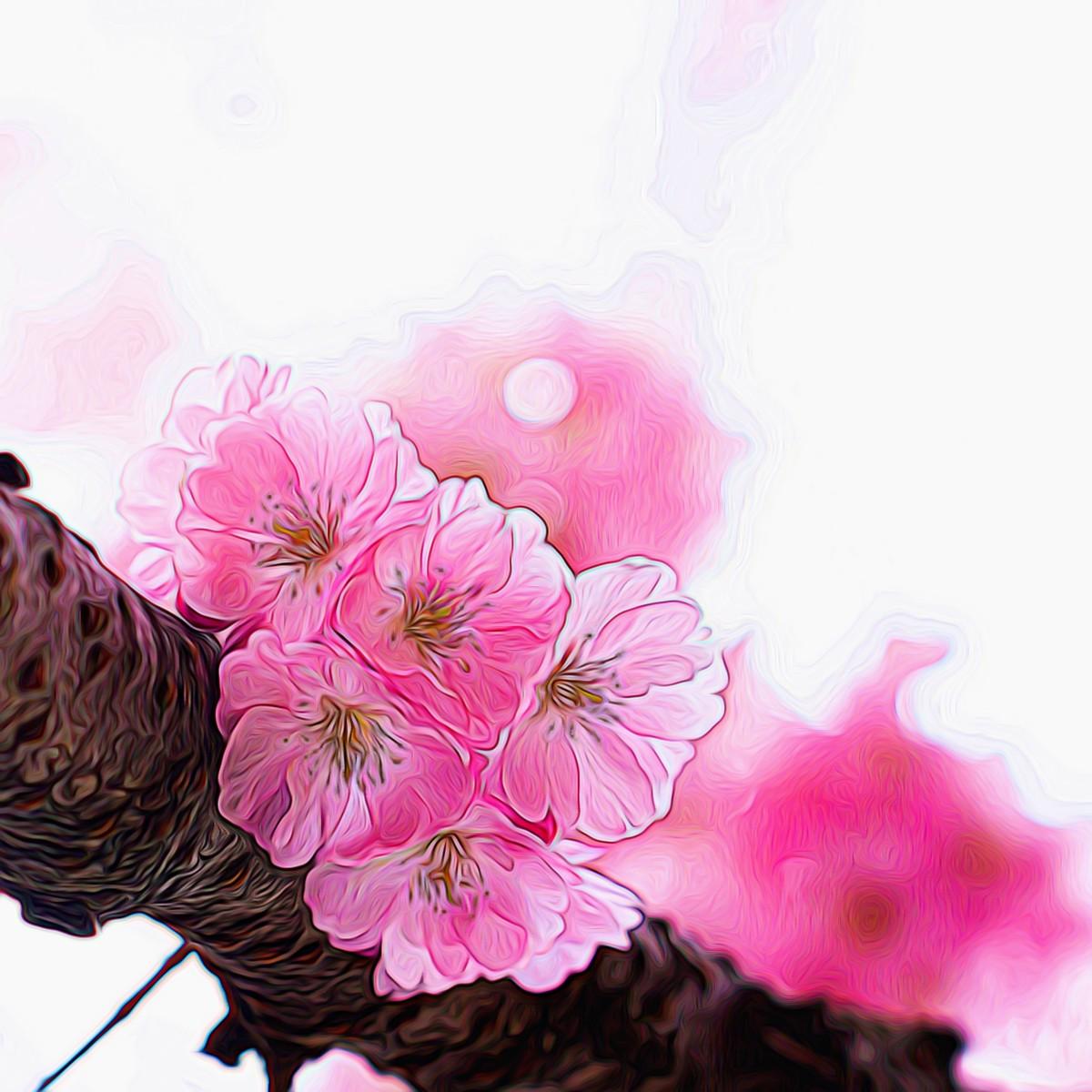 迎候春天_图1-7