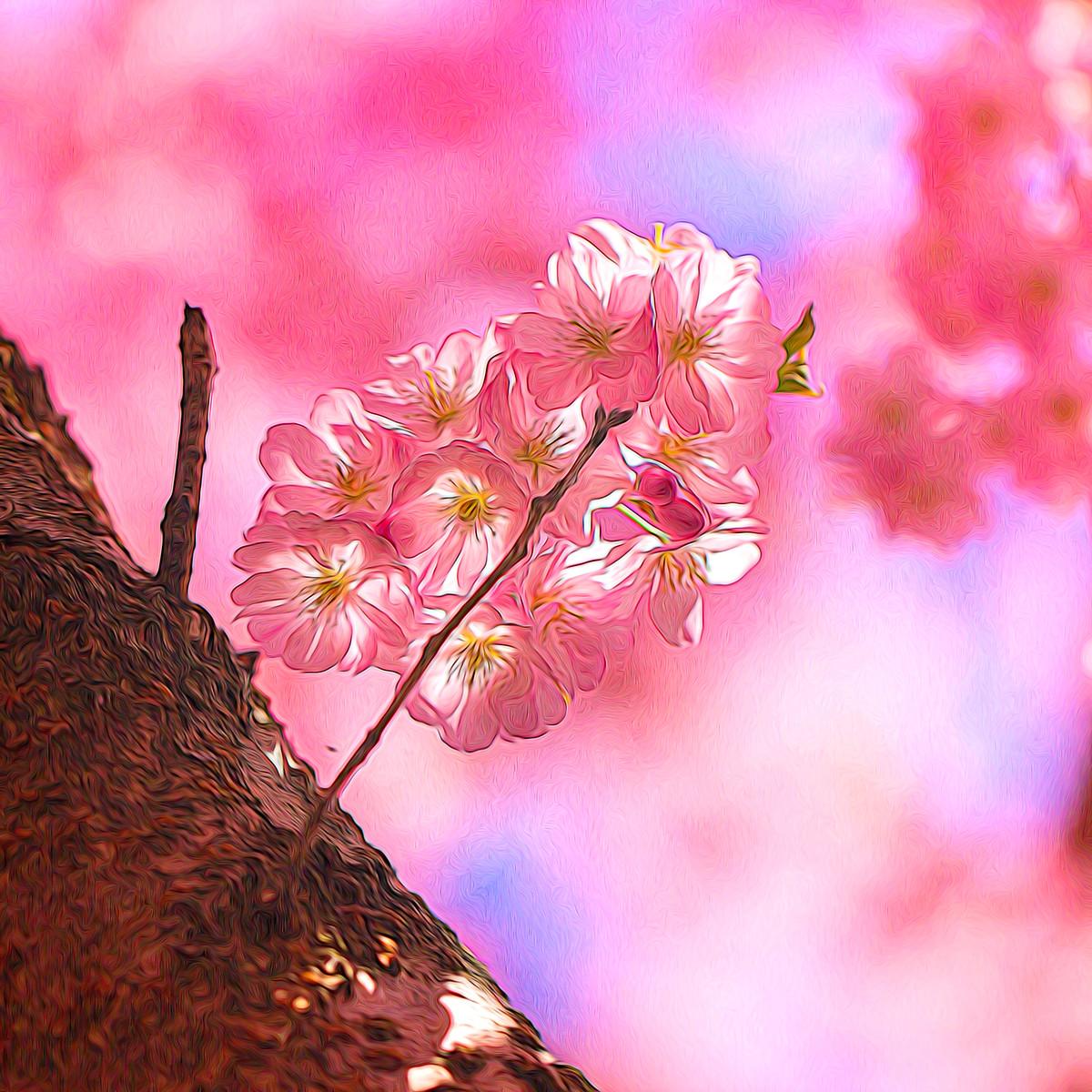 迎候春天_图1-9