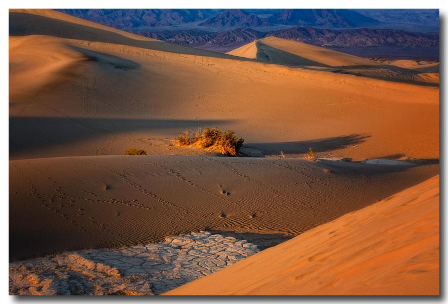 《酒一船摄影》:Death Valley 拍沙丘_图1-1