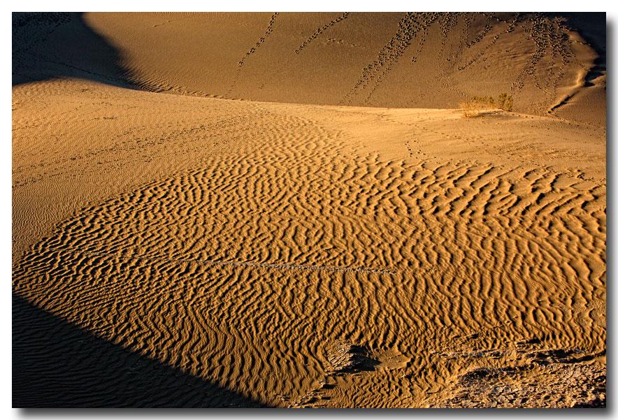 《酒一船摄影》:Death Valley 拍沙丘_图1-7