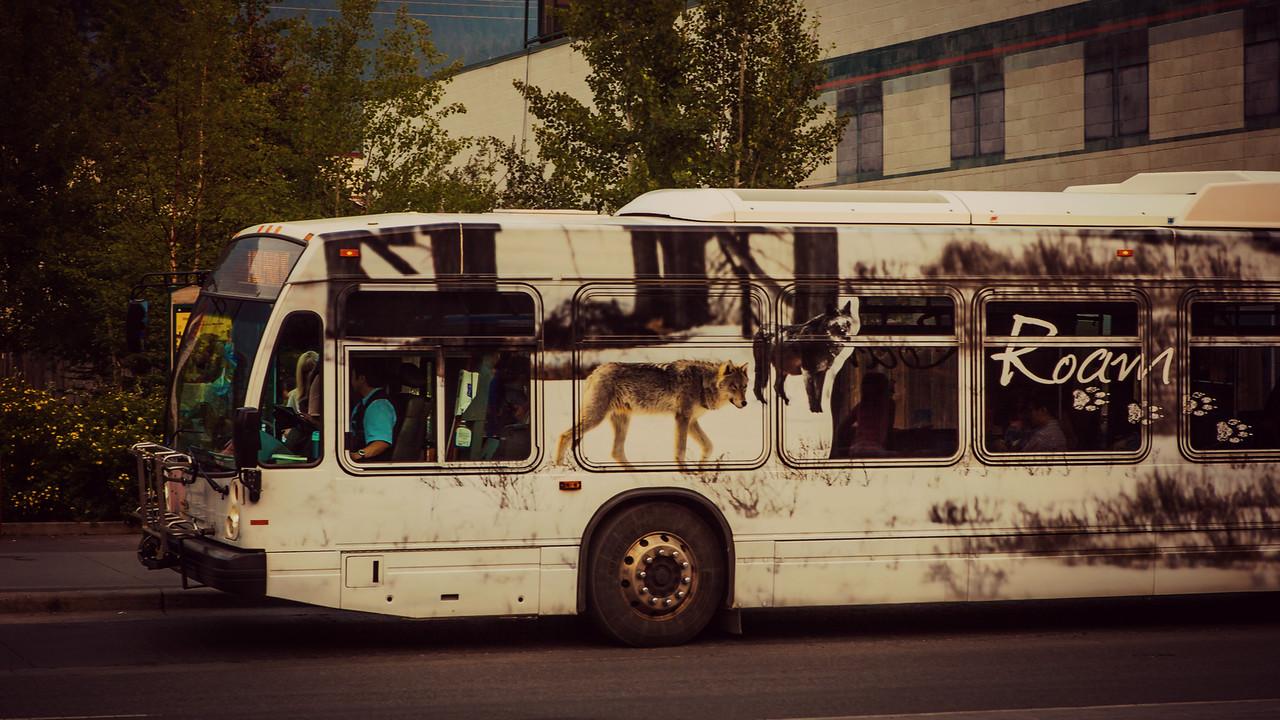 加拿大班夫,温心有趣的城市_图1-7