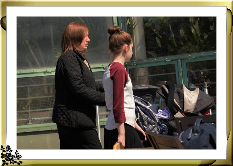 布鲁克林植物园赏樱花絮(2017-4-14)_图1-22