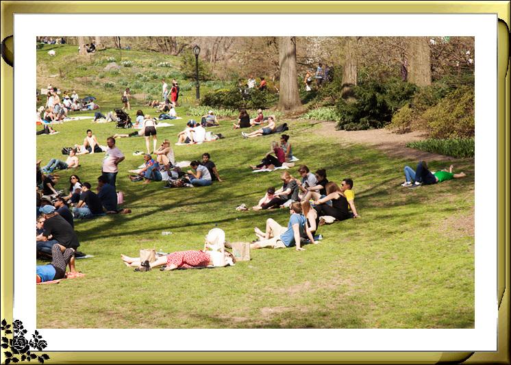 复活节,中央公园,春意盎然,生机勃勃_图1-1