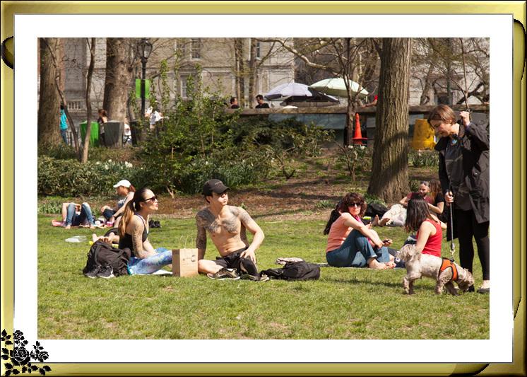 复活节,中央公园,春意盎然,生机勃勃_图1-3