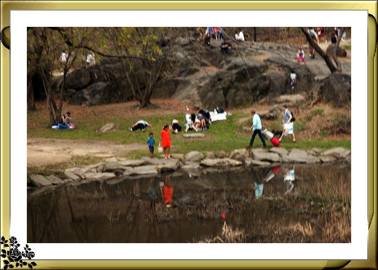 复活节,中央公园,春意盎然,生机勃勃_图1-9