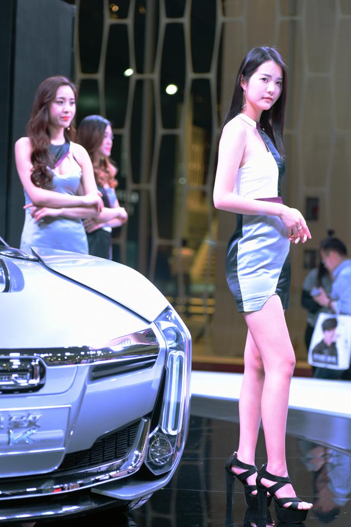 梦之工厂:香车美女汇集上海国际车展_图1-18