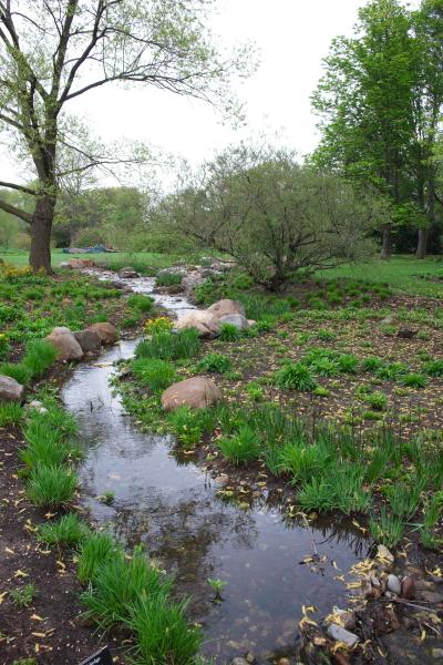 雨后之Brookylin 植物园_图1-1