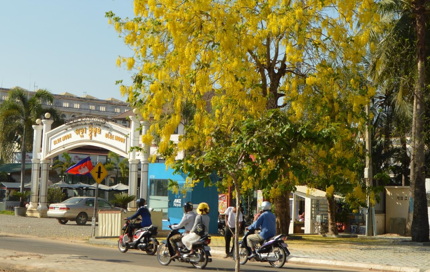 柬埔寨暹粒印象_图1-29
