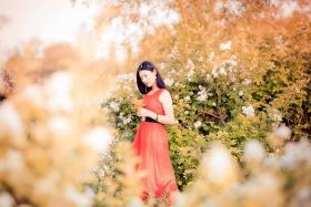 临沂大学有这么一道美丽的蔷薇长廊 当蔷薇M