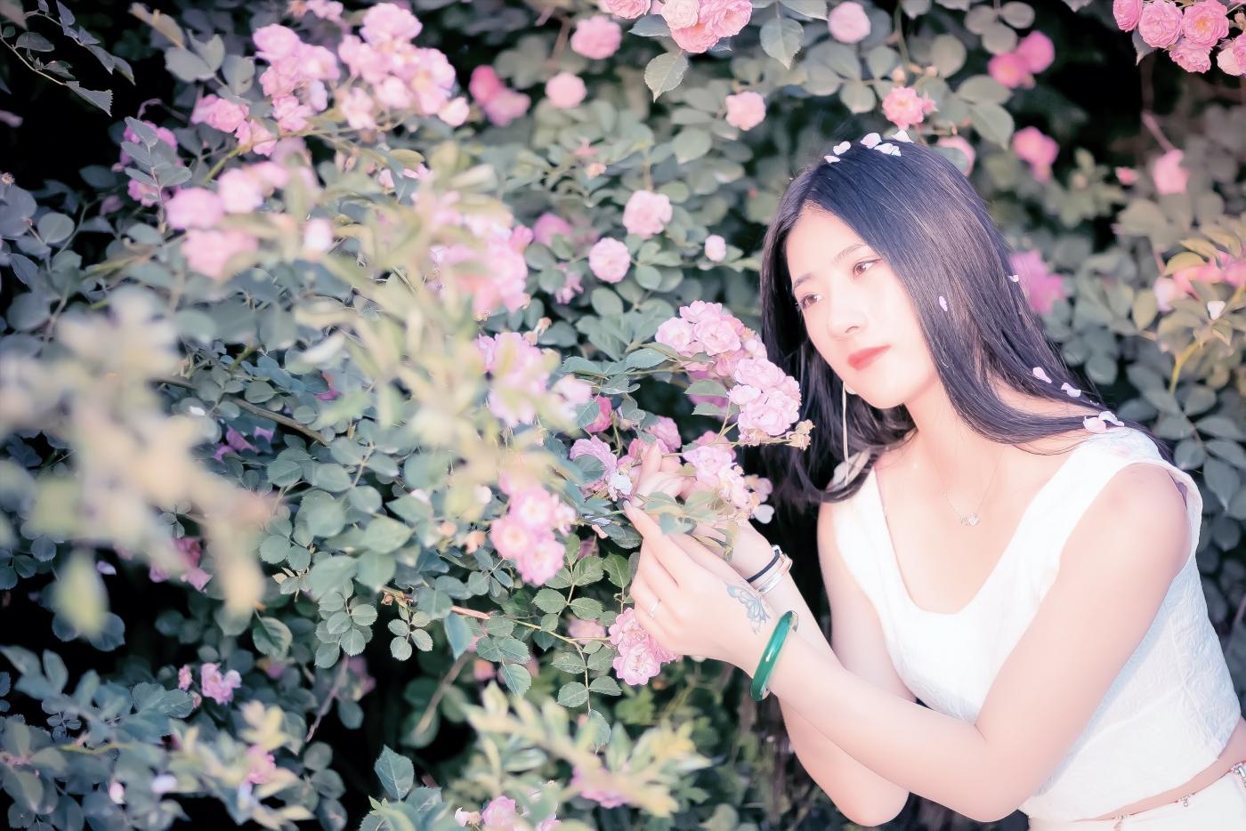 临沂大学有这么一道美丽的蔷薇长廊 当蔷薇MM王璐在她面前走过 ..._图1-13