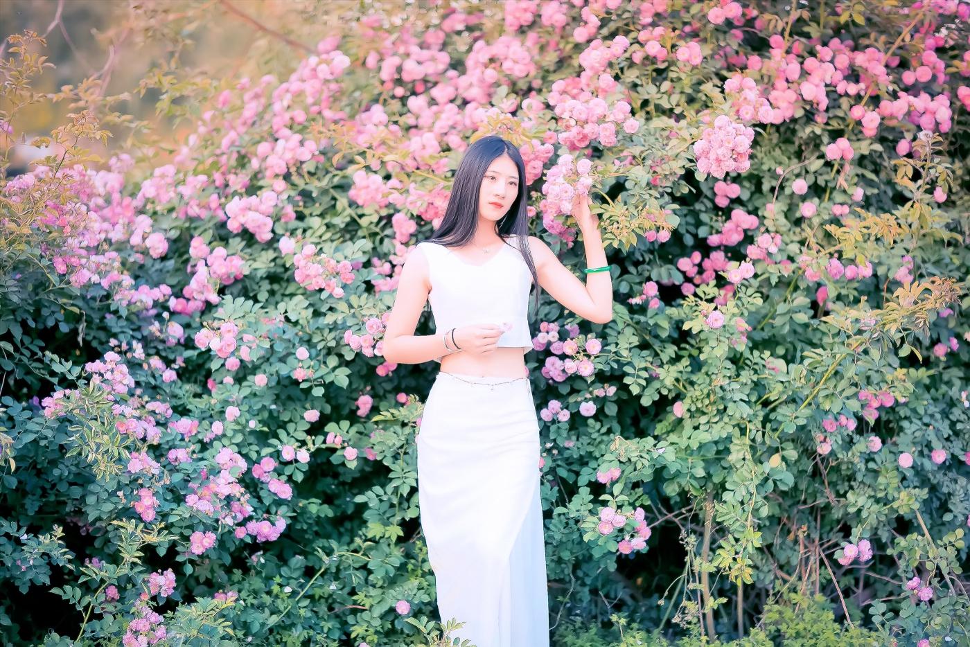 临沂大学有这么一道美丽的蔷薇长廊 当蔷薇MM王璐在她面前走过 ..._图1-17