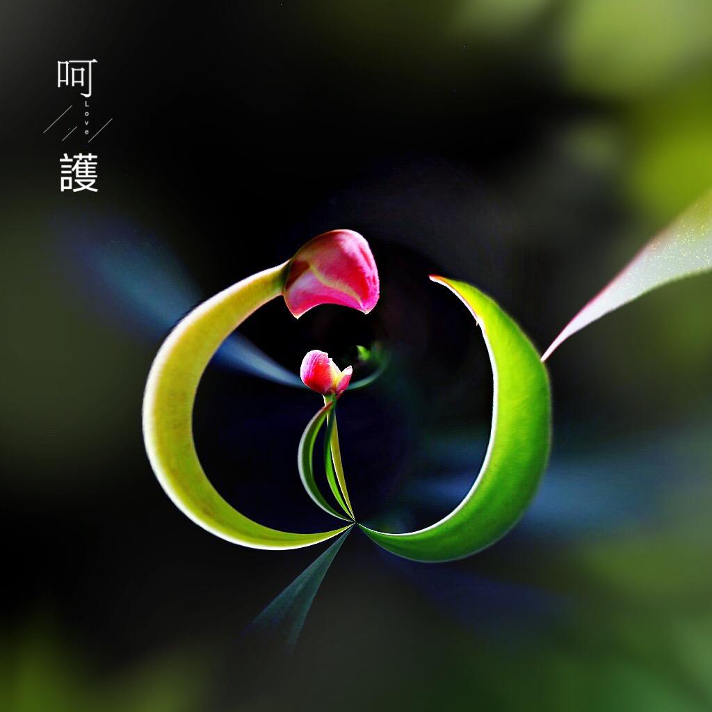 花开有声_图1-1