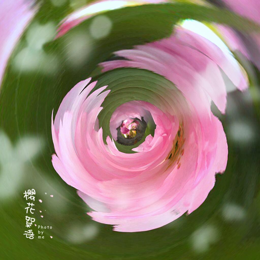 花开有声_图1-3