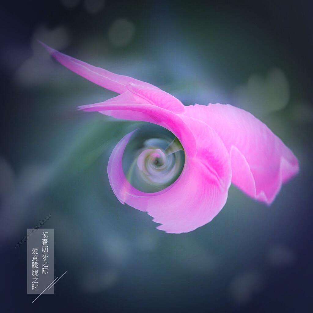 花开有声_图1-14