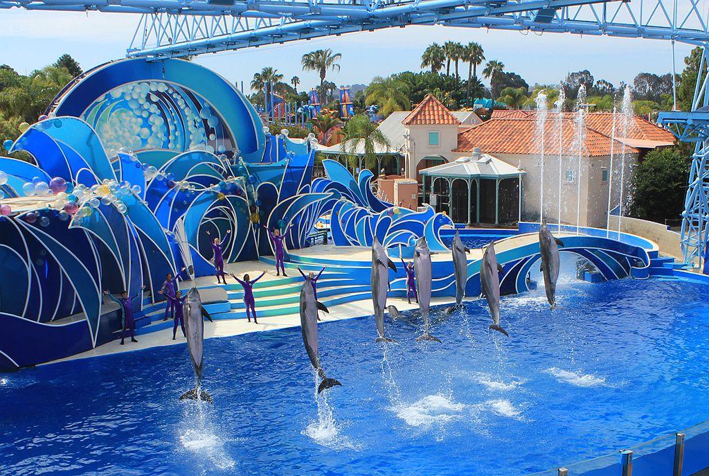 圣地亚哥海洋世界海豚表演_图1-12