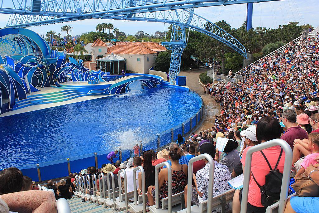 圣地亚哥海洋世界海豚表演_图1-14