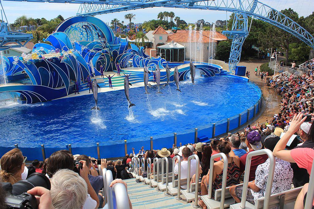 圣地亚哥海洋世界海豚表演_图1-15