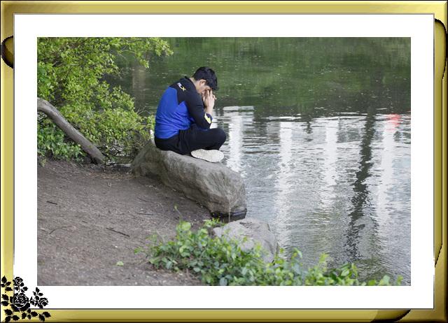 中央公园初夏,树木茂盛,花卉盛开,风景优美,游客兴旺! ..._图1-4