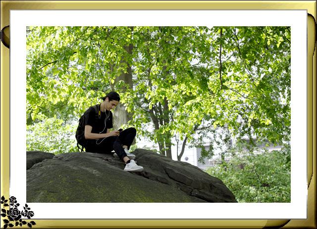 中央公园初夏,树木茂盛,花卉盛开,风景优美,游客兴旺! ..._图1-5