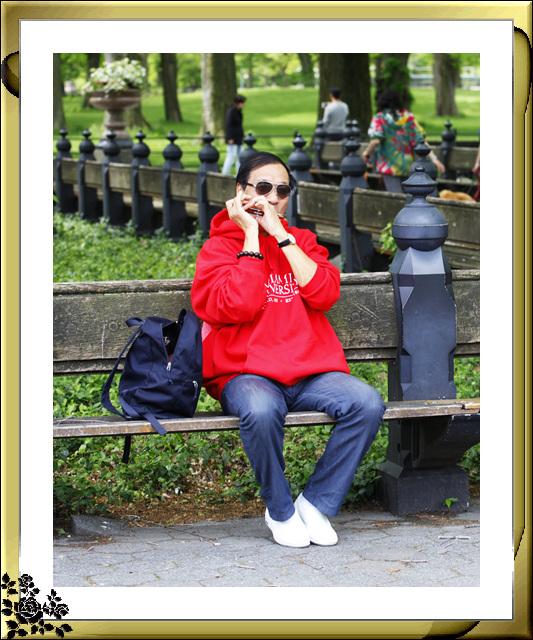 中央公园初夏,树木茂盛,花卉盛开,风景优美,游客兴旺! ..._图1-15