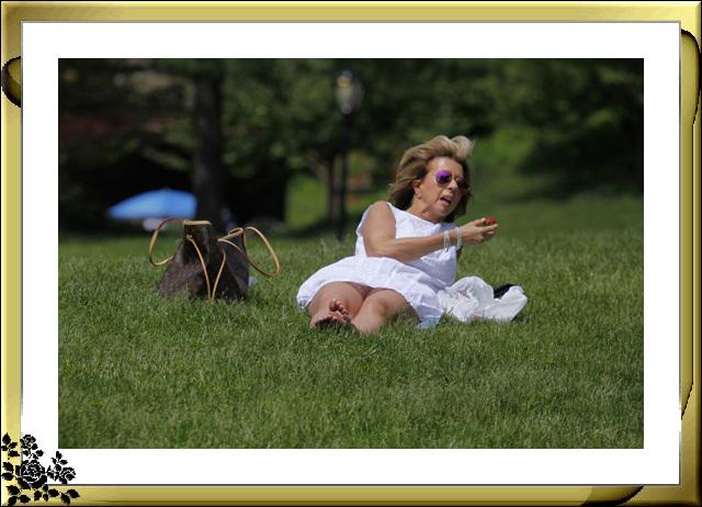中央公园初夏,树木茂盛,花卉盛开,风景优美,游客兴旺! ..._图1-19