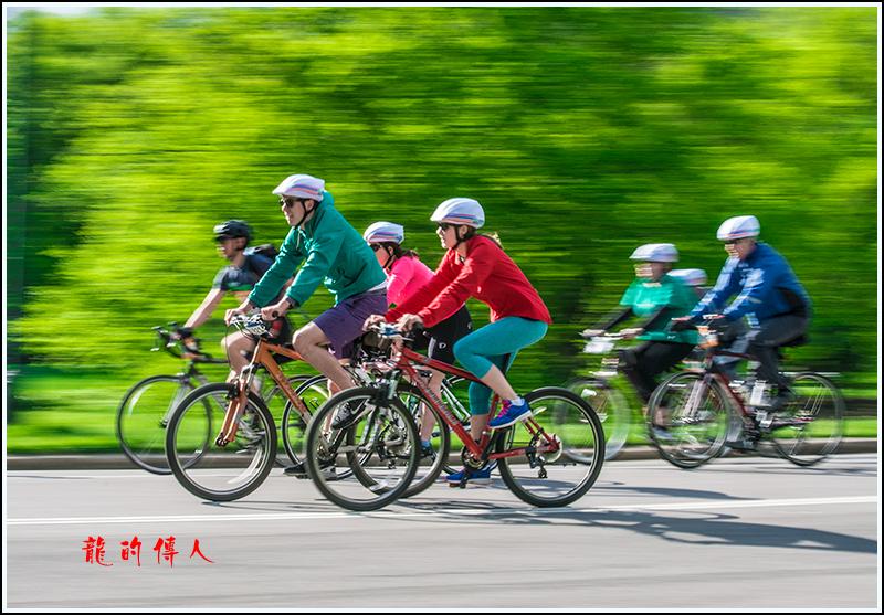 动感追拍2017年五区自行车赛_图1-10