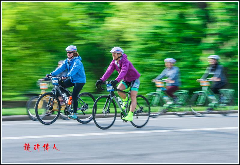 动感追拍2017年五区自行车赛_图1-14