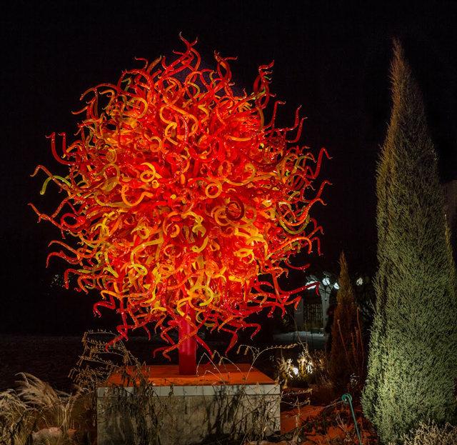 丹佛植物园拍玻璃雕塑_图1-1