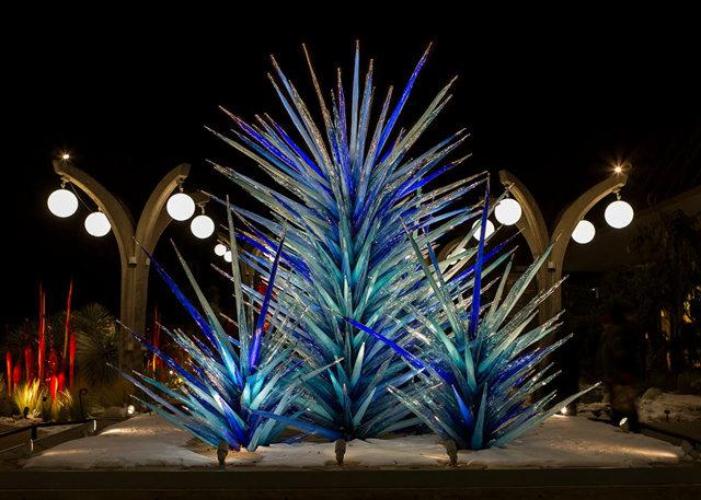 丹佛植物园拍玻璃雕塑_图1-2