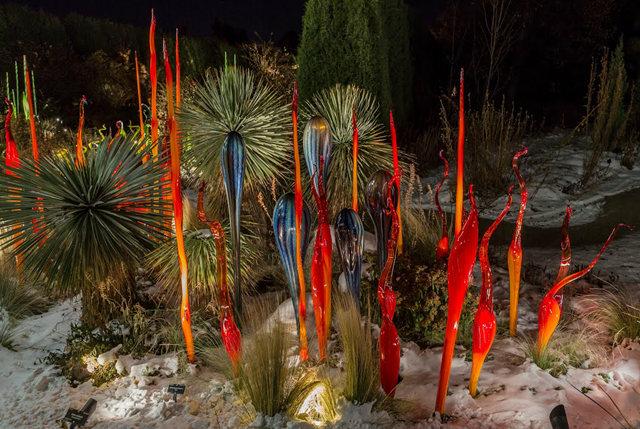 丹佛植物园拍玻璃雕塑_图1-3