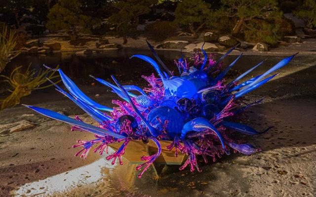 丹佛植物园拍玻璃雕塑_图1-10
