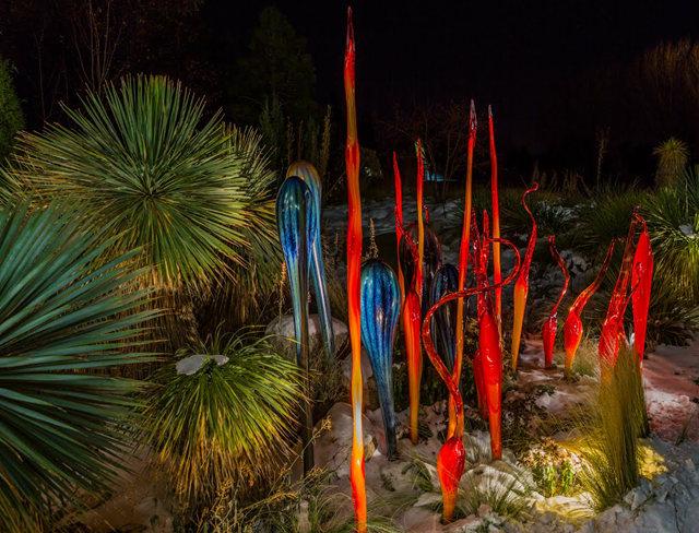 丹佛植物园拍玻璃雕塑_图1-15