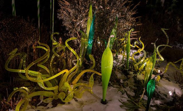 丹佛植物园拍玻璃雕塑_图1-16