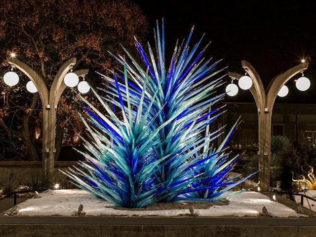 丹佛植物园拍玻璃雕塑_图1-17