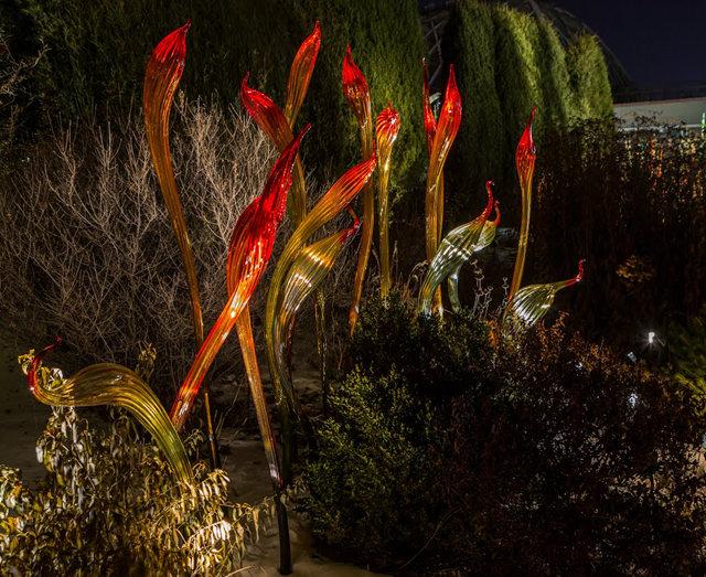 丹佛植物园拍玻璃雕塑_图1-22