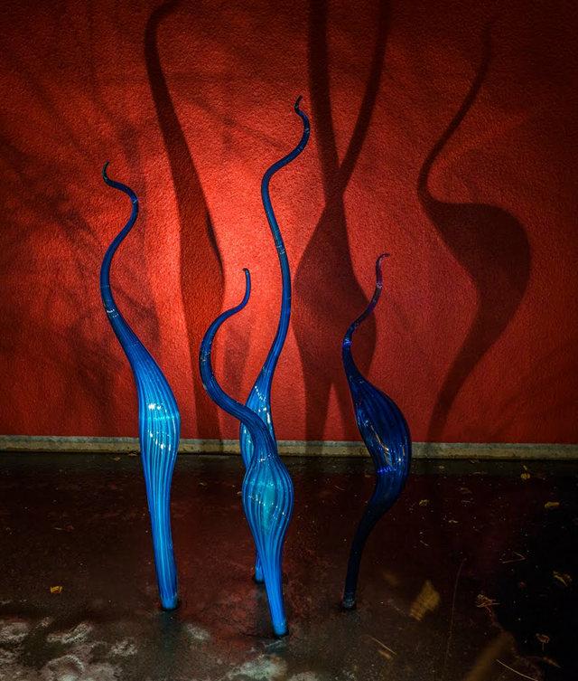 丹佛植物园拍玻璃雕塑_图1-23