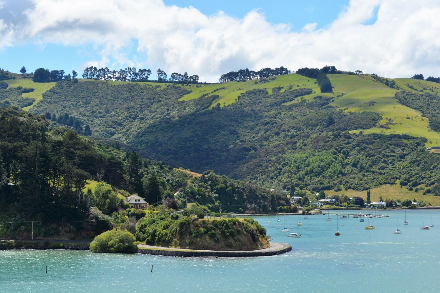 环新西兰游轮第二站——Dunedin但尼丁_图1-6
