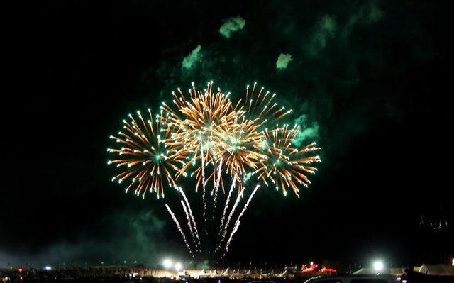 新泽西州热气球节_图1-2