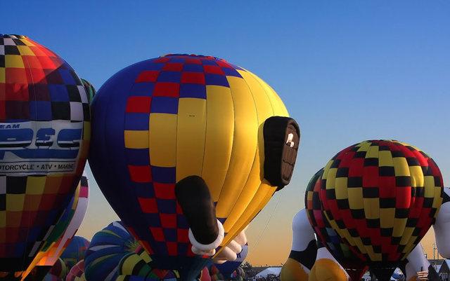 新泽西州热气球节_图1-10