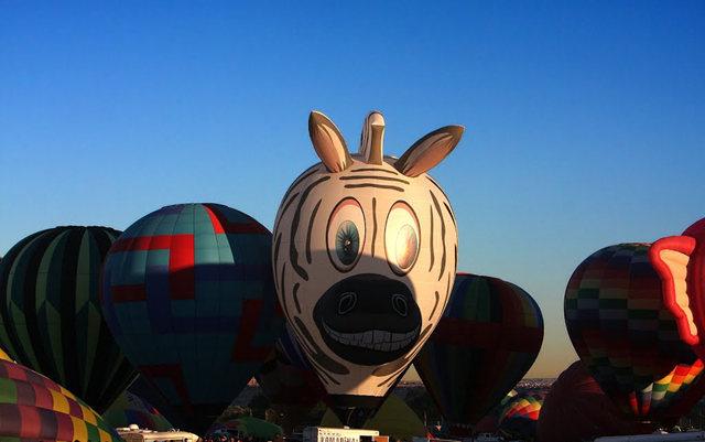 新泽西州热气球节_图1-11