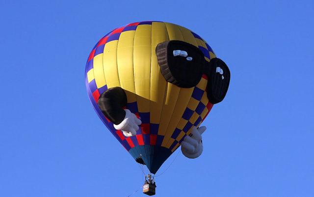 新泽西州热气球节_图1-13