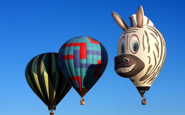 新泽西州热气球节_图1-14