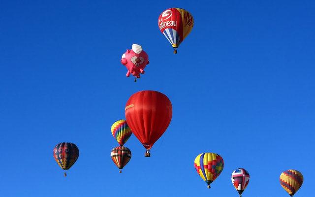 新泽西州热气球节_图1-15