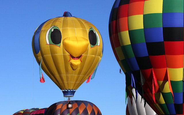新泽西州热气球节_图1-22