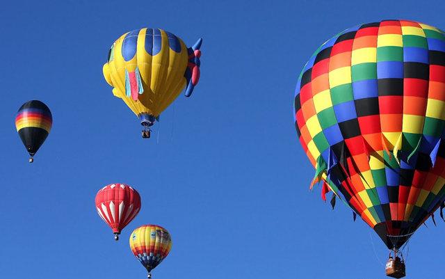 新泽西州热气球节_图1-24
