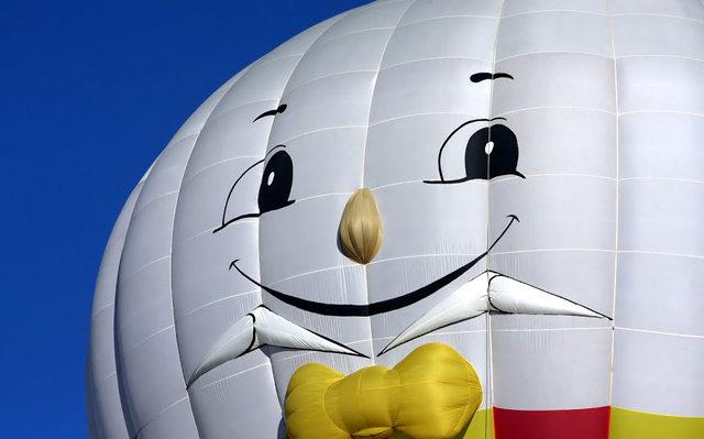 新泽西州热气球节_图1-27