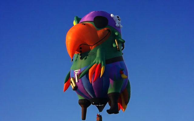 新泽西州热气球节_图1-31