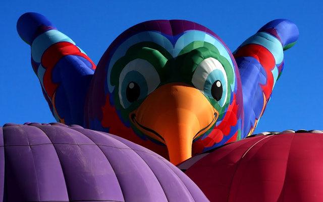 新泽西州热气球节_图1-32
