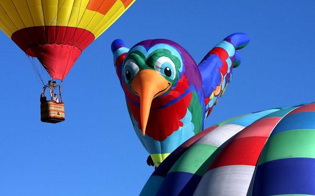 新泽西州热气球节_图1-33